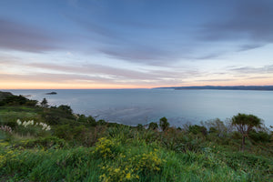 Overlooking Mahia, Young Nick's Head, Tuamotu Island, Titirangi Domain