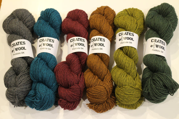 6 skeins of Poledale DK in the full range of colours