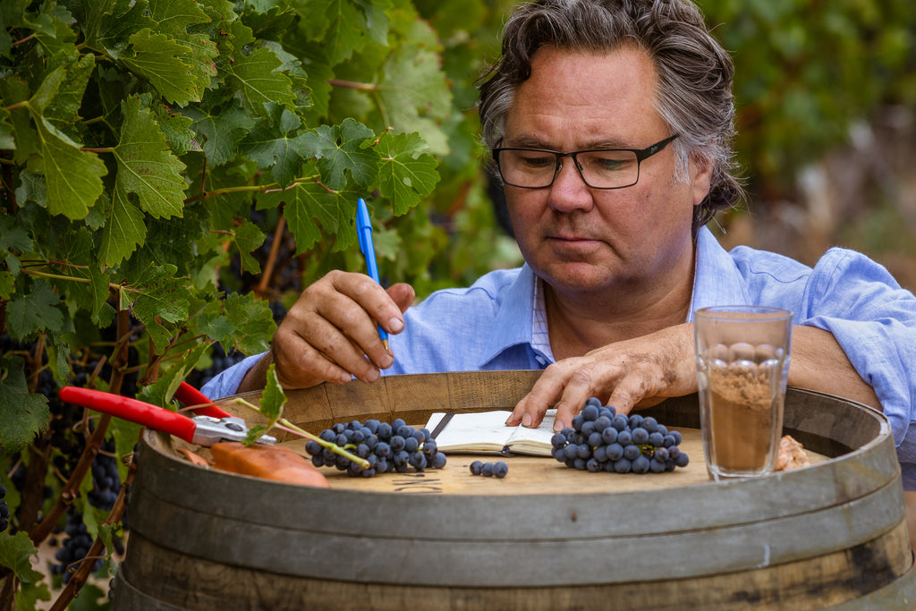 Domaine Naturaliste Vineyard Tour & Taste