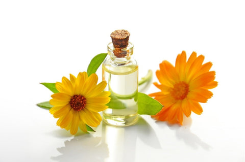 Calendula oil is used in Vision Products' natural skin care and hair care products