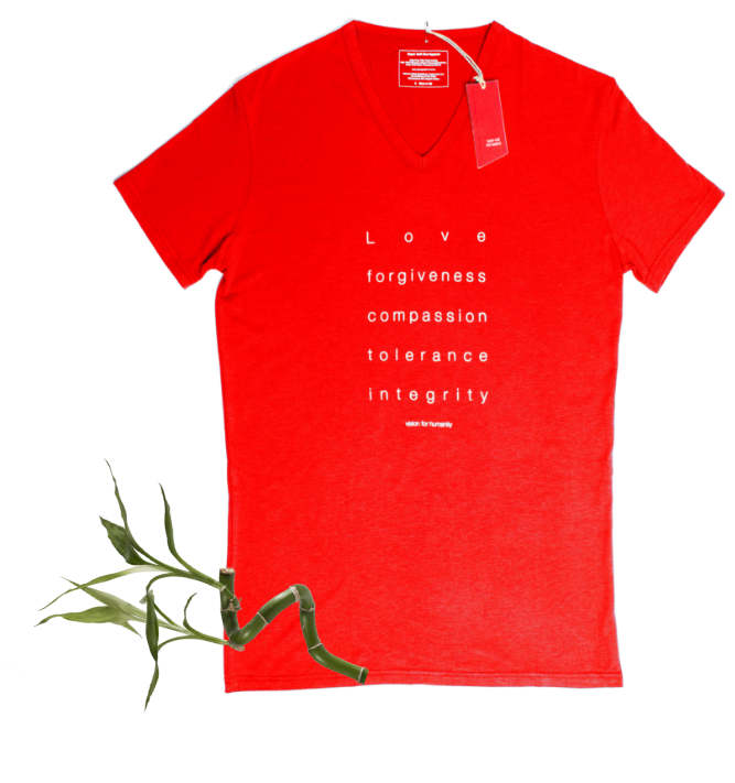 Men's Bamboo V Neck T-Shirt (S/S Print)