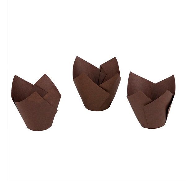 50mm Brown Muffin Tulip | Ecopac