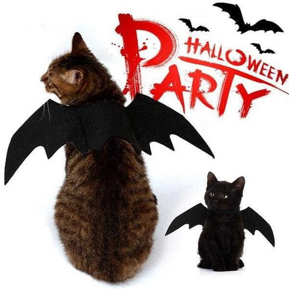 Halloween Party-Cat Bat Wing Costume