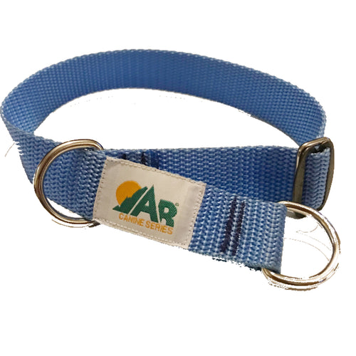 Martingale style control collar safe for everyday wear