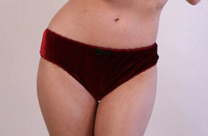 Velvet Lingerie Brief cut Panty,
