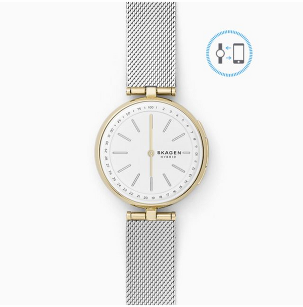 SKAGEN CONNECTED SKT1413