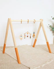 baby gym toys earthly