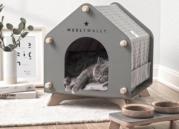Pet Furniture Trends