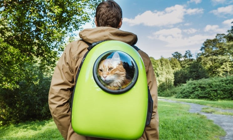 Cat Backpack Carriers