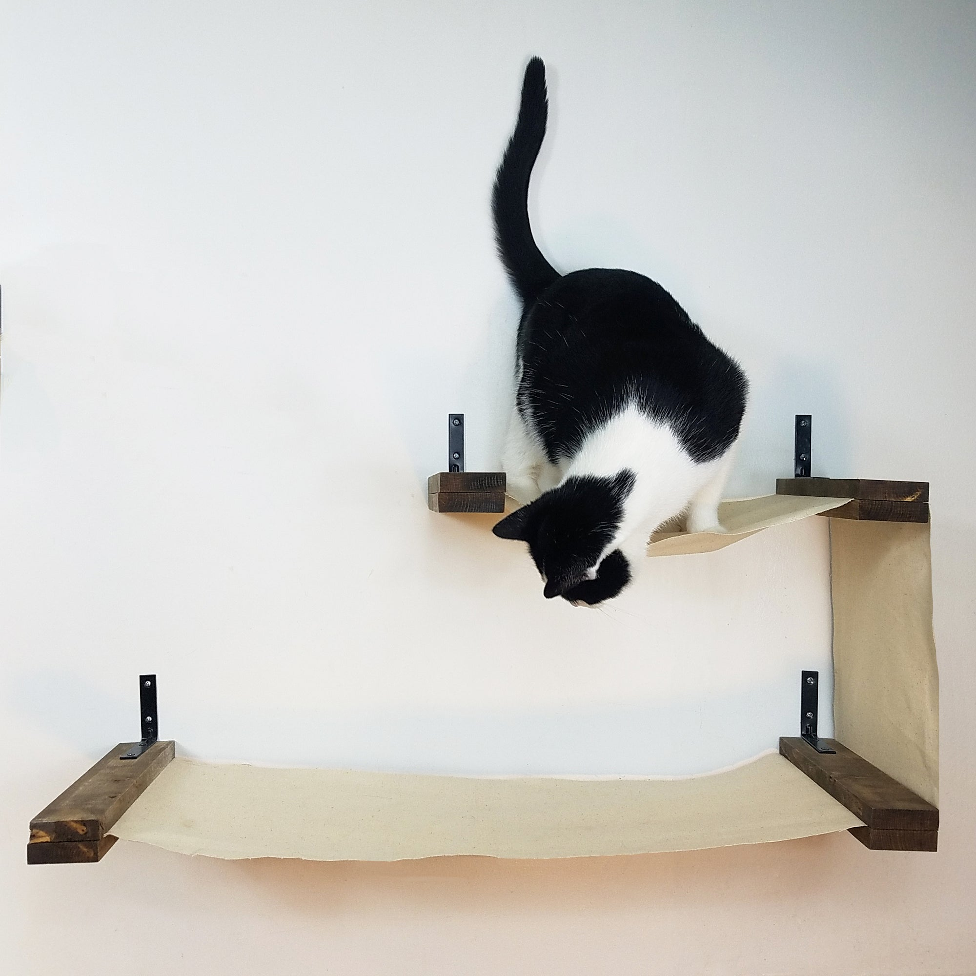 Cat Wall Shelves - Furniture For Cats