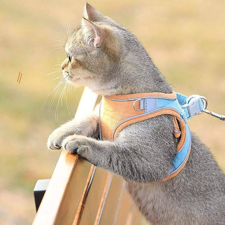 Outdoor Cat Harness & Leash Set