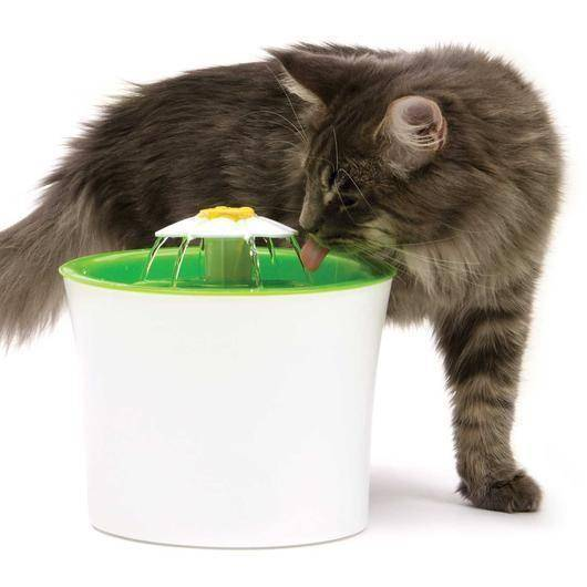 2 x Cat Cave Co™ Cat Water Fountain | Cat Health