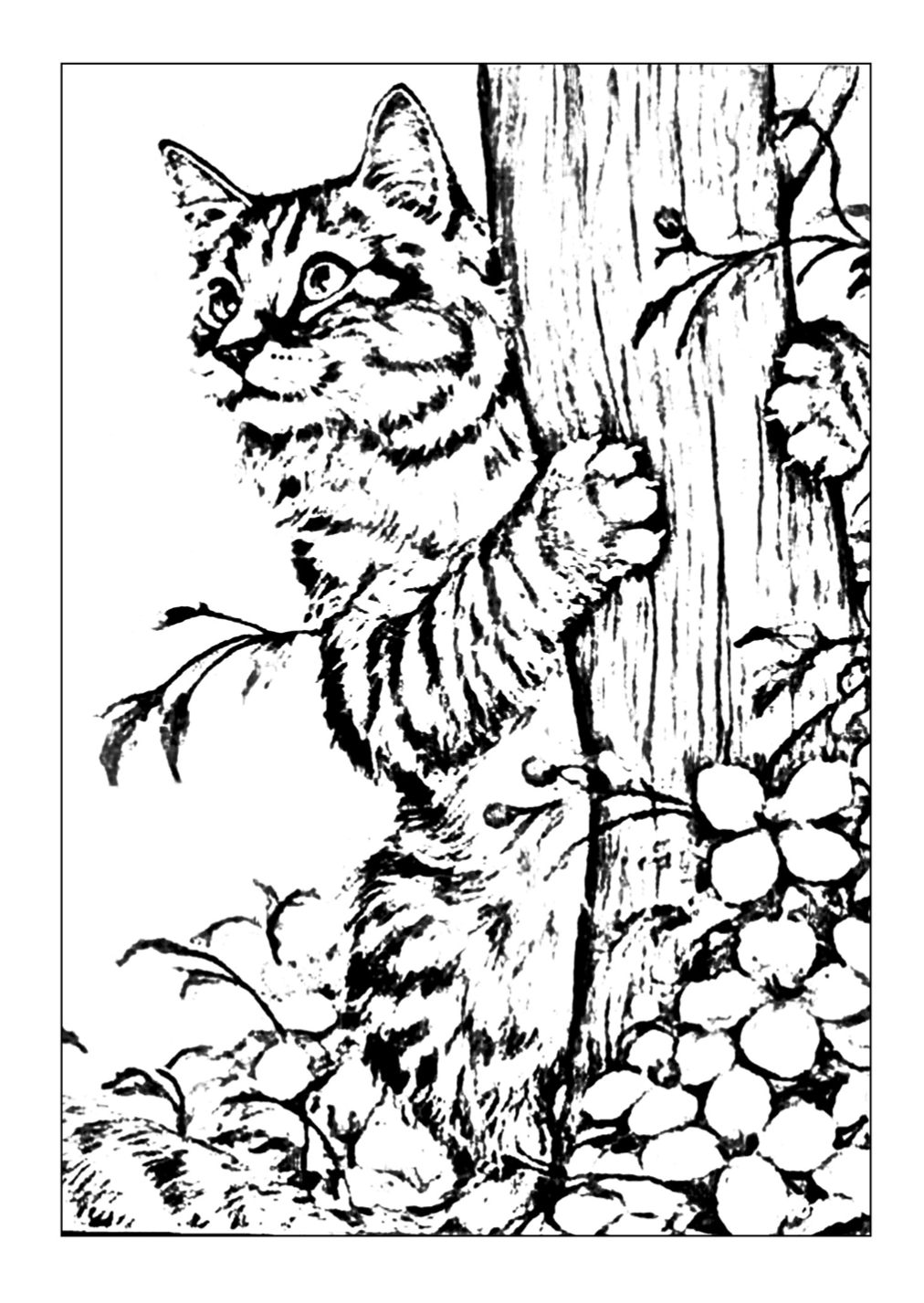 Garden Cat Coloring Page | Free Download