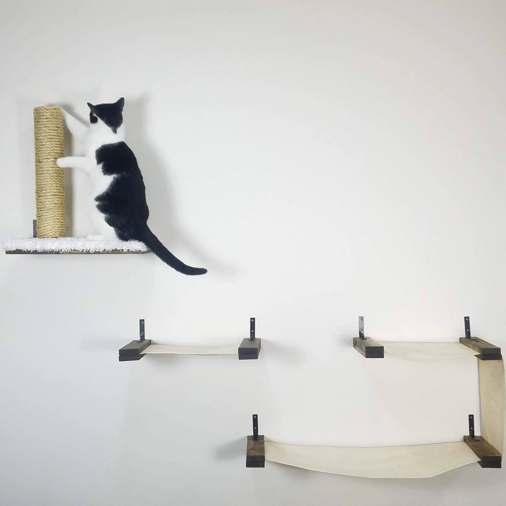 The Ultimate Playground Cat Wall Furniture Cat Cave Co