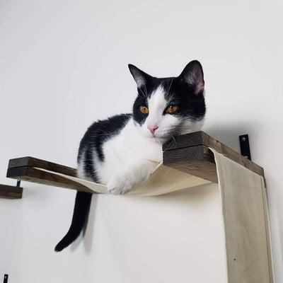 Double Decker Hammock | Cat Wall Furniture