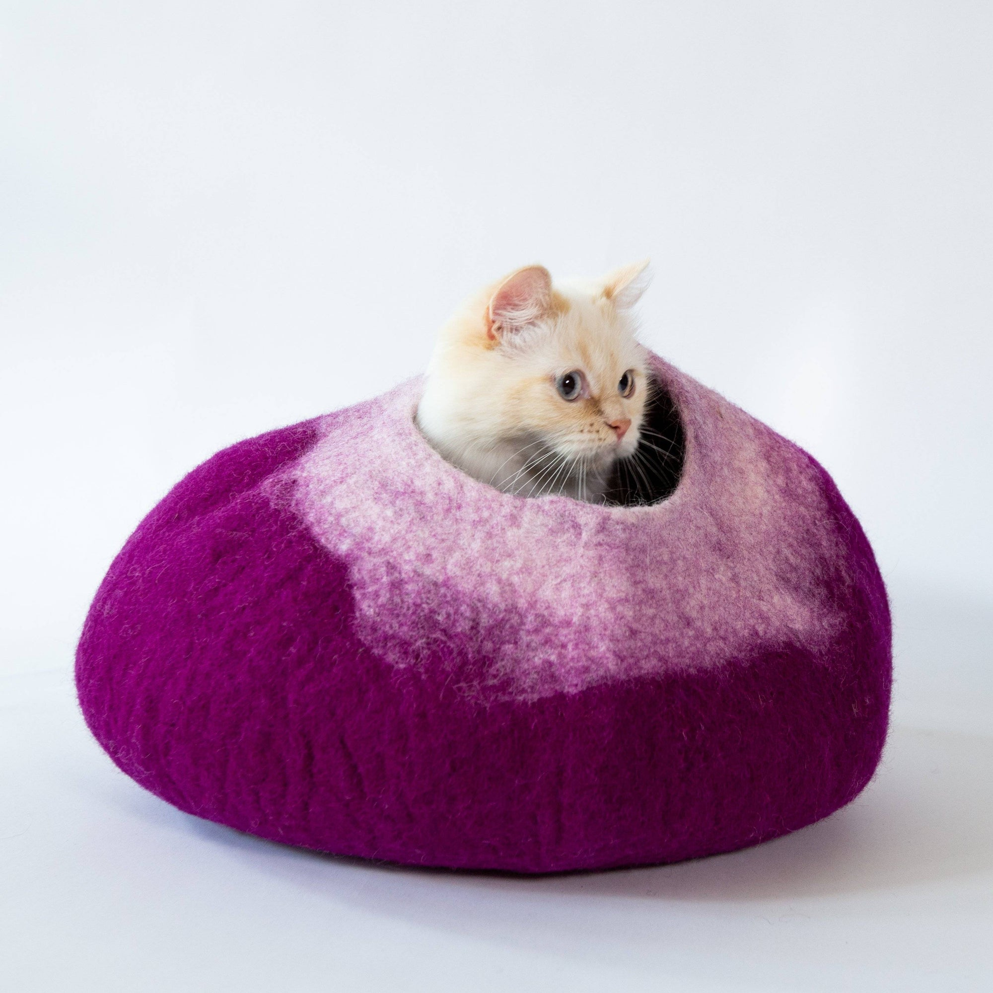 Purple & White Cat Cave | Pet Bed