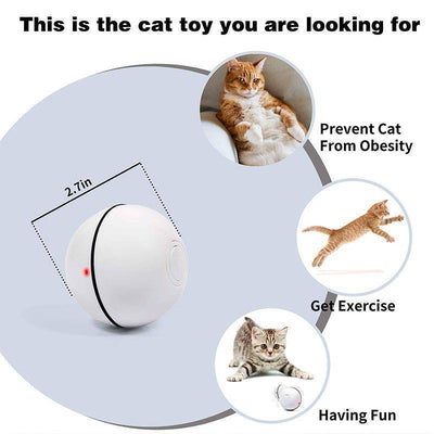 CatBall | Interactive Cat Toy