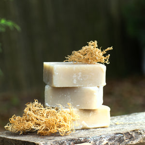 Sea Moss and Aloe Body Bar