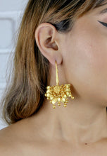 Lataa kuva Gallerian katseluohjelmaan, Golden Spring Hook Earrings