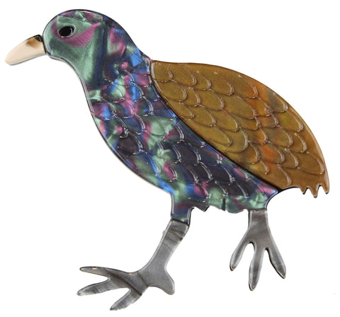 Kevin The Kiwi Broach