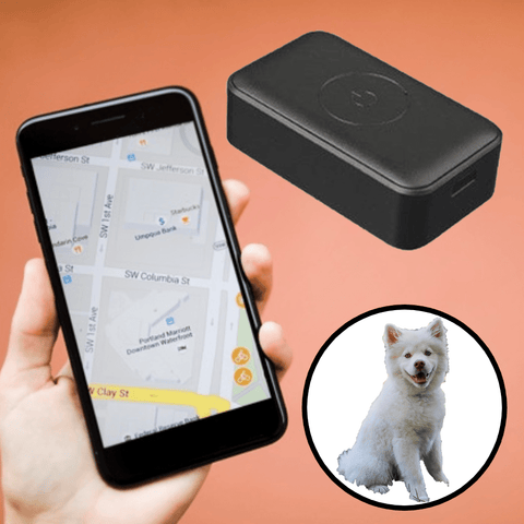 Dog Microchip GPS Tracker Collar Monitor Pet Lost