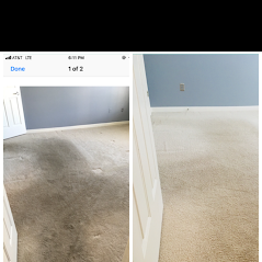 Professional Carpet Cleaning Residential