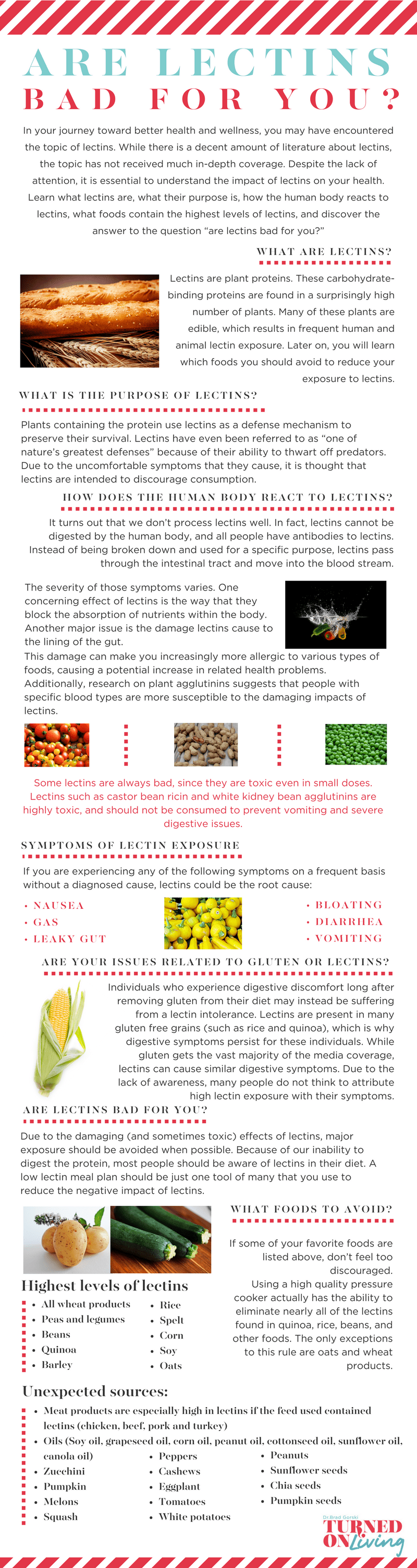 are lectins bad for you infographic
