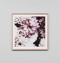 Load image into Gallery viewer, Framed Print- Flowering Muse 2