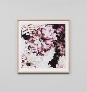 Framed Print- Flowering Muse 2