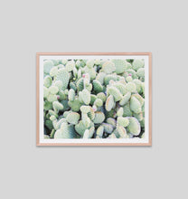 Load image into Gallery viewer, Framed Print- Cactus Garden