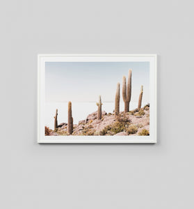 Framed Print- Cactus View