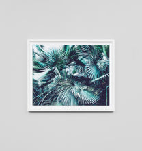 Load image into Gallery viewer, Framed Print- Oasis View 1