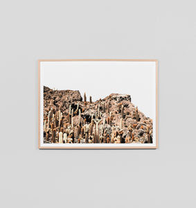 Framed Print- Rocky Cactus Mountain