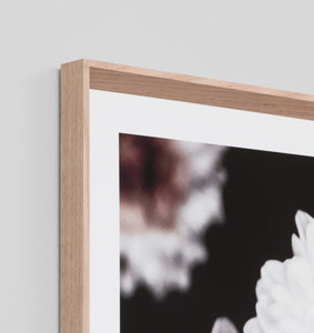 Framed Print- Flowering Muse 1