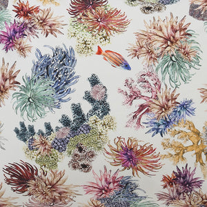 Kip & Co - Great Barrier Reef Cotton Fitted Sheet