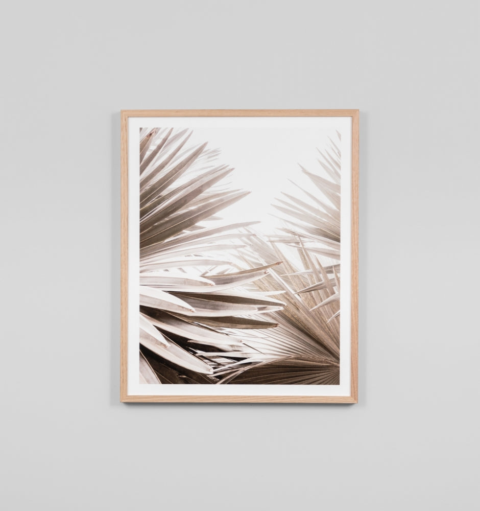 Framed Print - Natural Palm 1