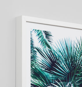 Framed Print- Oasis View 1