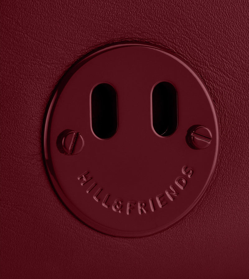 Happy Mini Camera Bag - Oxblood Mini Camera Bag with Oxblood 'Happy' face plaque detail - Hill and Friends - Hill and Friends