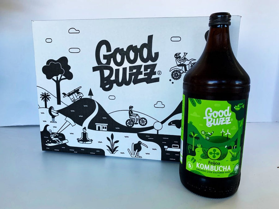 GOOD BUZZ KOMBUCHA 328ml
