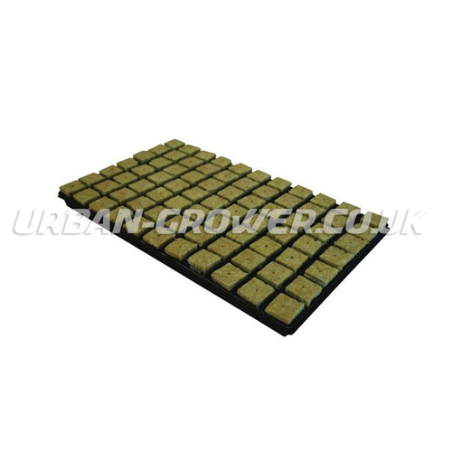 Rockwool Large Propagation Plugs Full Tray of 77 - Urban Grower Hydroponics