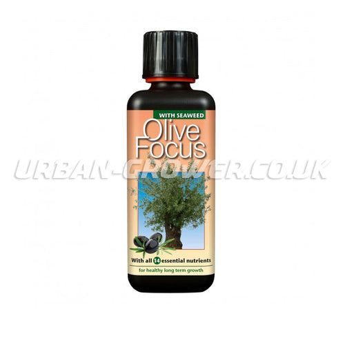 Growth Technology - Olive Focus - Urban Grower Hydroponics