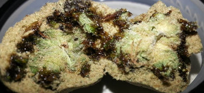 Cannabis Caviar - Everything you need to know & more!
