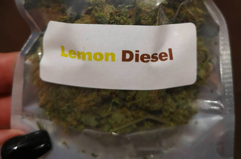 Lemon Diesel Strain - Everything You Need to Know & More!