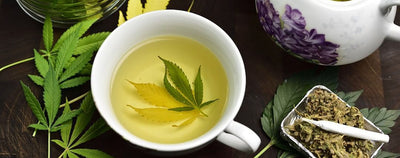 3 Simple Steps to Make Weed Tea That Will Blow Your Mind and Your Taste Buds!
