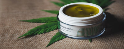 9 Best Hemp Lotion on Amazon: N04 is Amazing!