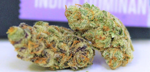 Biscotti strain review - Everything You Need to Know & More!
