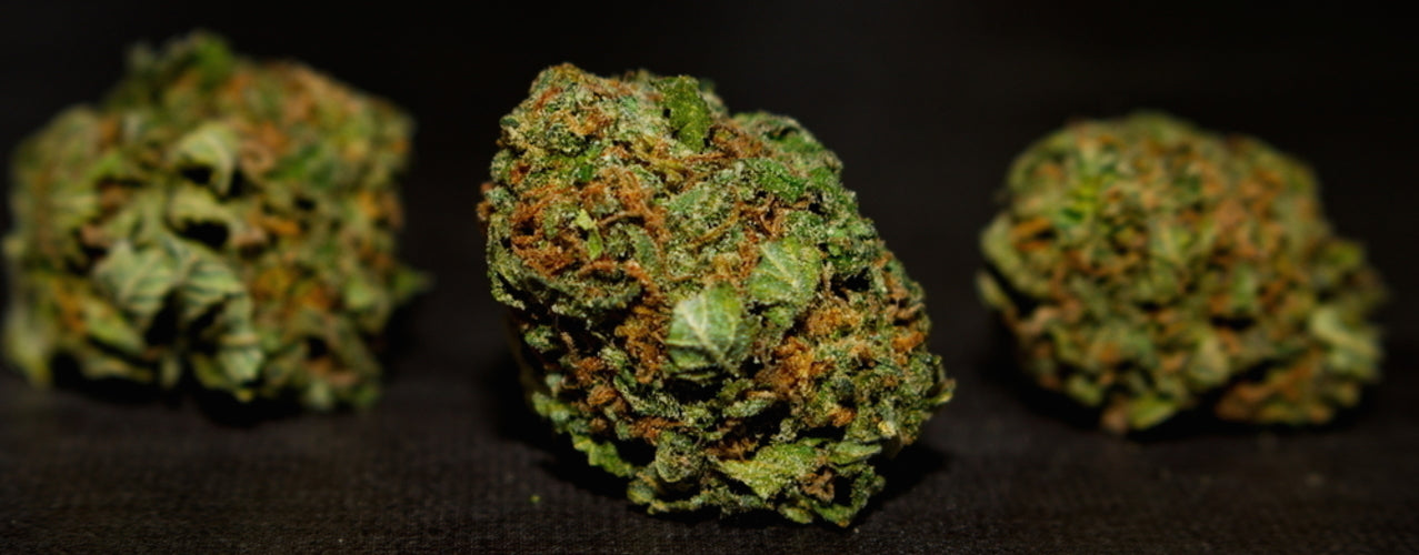 Bubba Kush Strain - Everything you need to know and more!