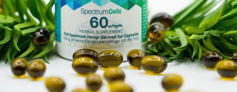 The Ultimate Guide to CBD Capsules in 2019
