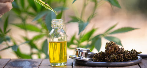 16 Best CBD Oils in the UK in 2020 - The Ultimate Guide!