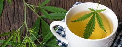 13 Best CBD Teas in 2020 - You will love the taste of No4!